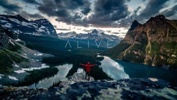 Timelapse. ALIVE | Canada 4K | Travel | Was is hier eigentlich los? | wihel.de