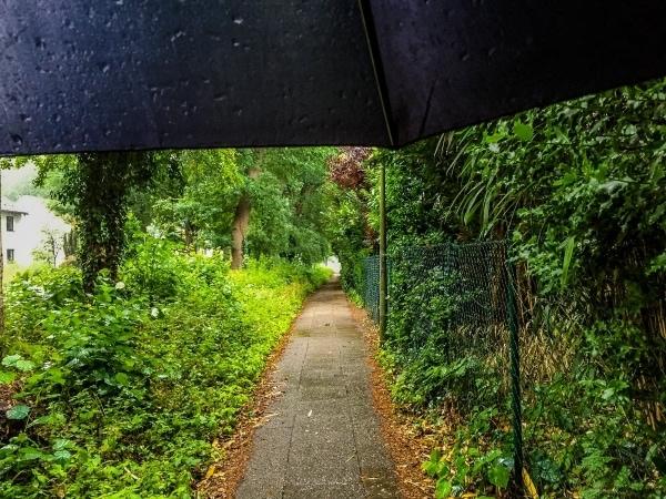 360° – Das war meine Woche – KW 25 / 2018 | Geschichten aus'm Alltag | Was is hier eigentlich los? | wihel.de