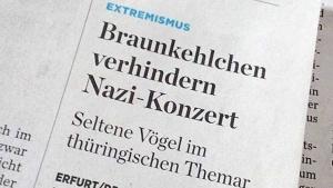Viel Liebe für das Braunkehlchen | Lustiges | Was is hier eigentlich los? | wihel.de