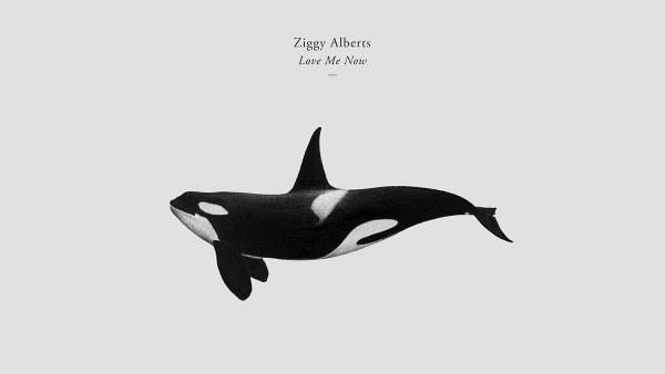 Ziggy Alberts - Love Me Now | Musik | Was is hier eigentlich los? | wihel.de