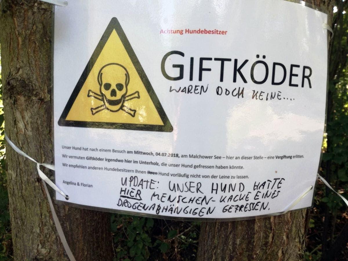 Wenn sich das vermeintliche Rattengift nur als Menschen-Kacke eines Drogenabhängigen herausstellt | Lustiges | Was is hier eigentlich los?