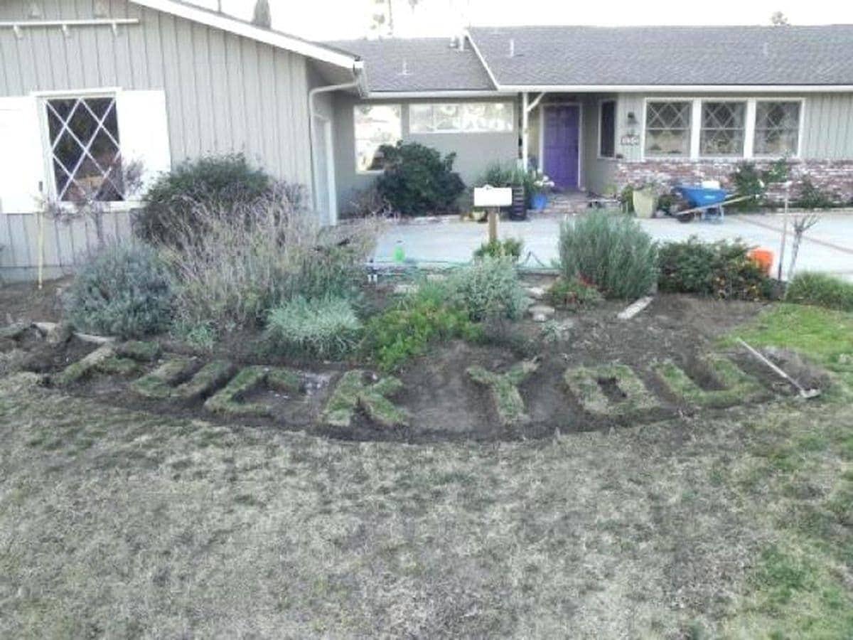 Wenn man als Gärtner einfach mal ehrlich ist | Lustiges | Was is hier eigentlich los?