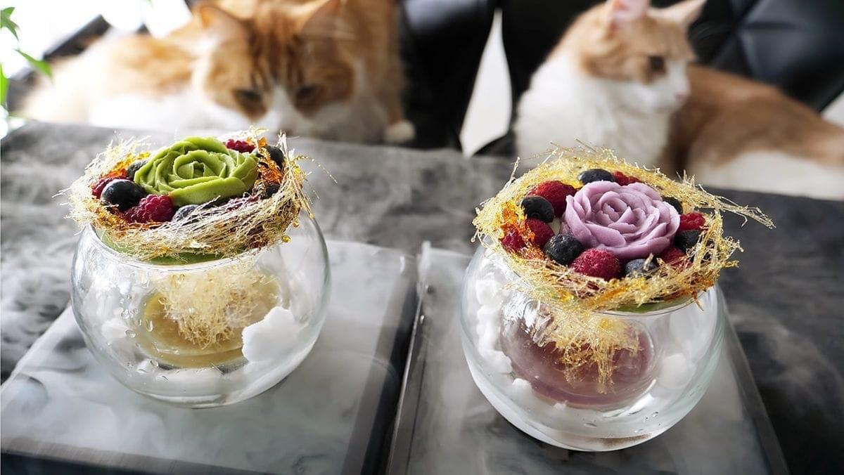 Japanische Blueberry und Matcha Cheesecake Desserts | Essen und Trinken | Was is hier eigentlich los?