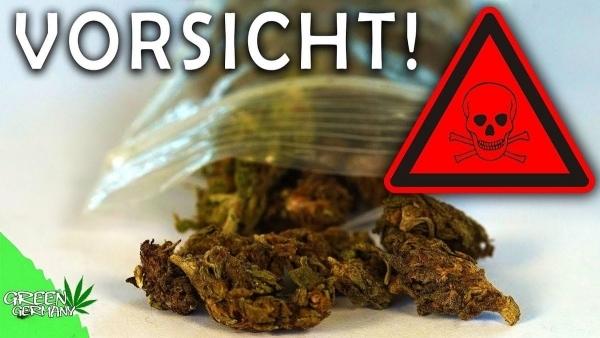 Kiffer-Reportage: Gestrecktes Gras aus Berlin 2018 | Was gelernt | Was is hier eigentlich los? | wihel.de