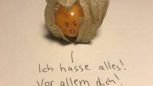 Warum die Physalis eigentlich Fiesalis heißt | Lustiges | Was is hier eigentlich los? | wihel.de