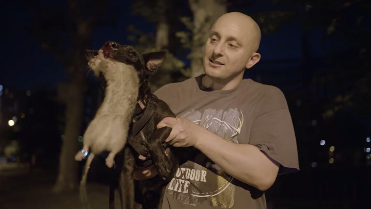 Eine Gruppe, die nachts in New York Ratten jagt | Was gelernt | Was is hier eigentlich los?