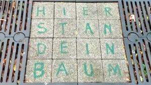 Flachwitz der Woche: Als Stan endlich seinen scheiß Baum bekommen hat | Lustiges | Was is hier eigentlich los? | wihel.de