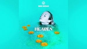 Big Wild - Heaven | Musik | Was is hier eigentlich los? | wihel.de