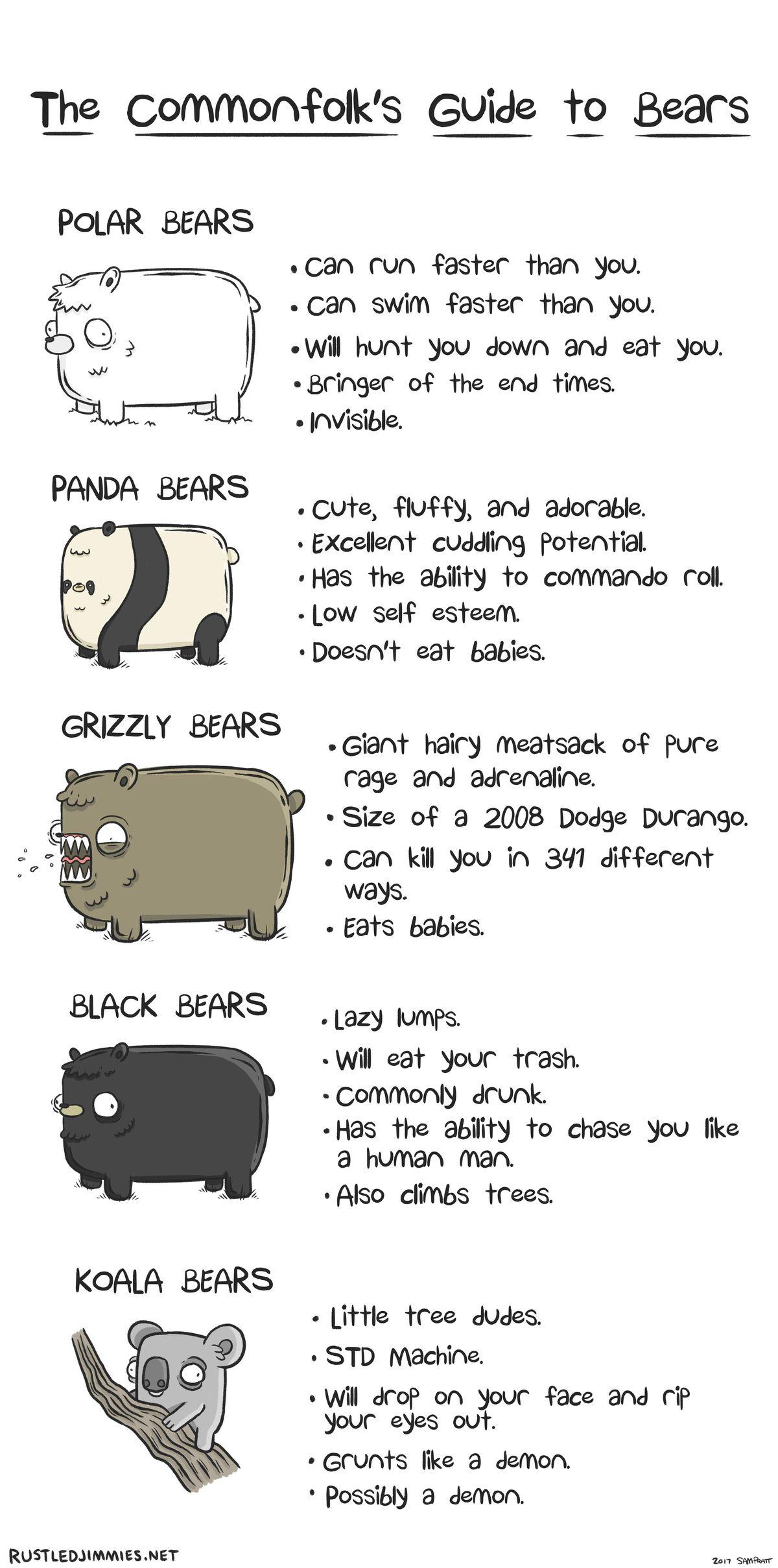 Was man über Bären wissen sollte | Lustiges | Was is hier eigentlich los?