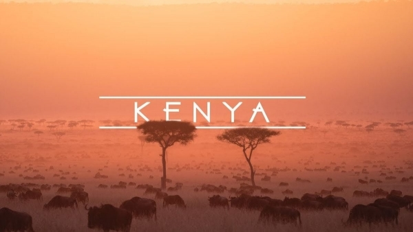 Kenya – Trip of a lifetime | Travel | Was is hier eigentlich los? | wihel.de