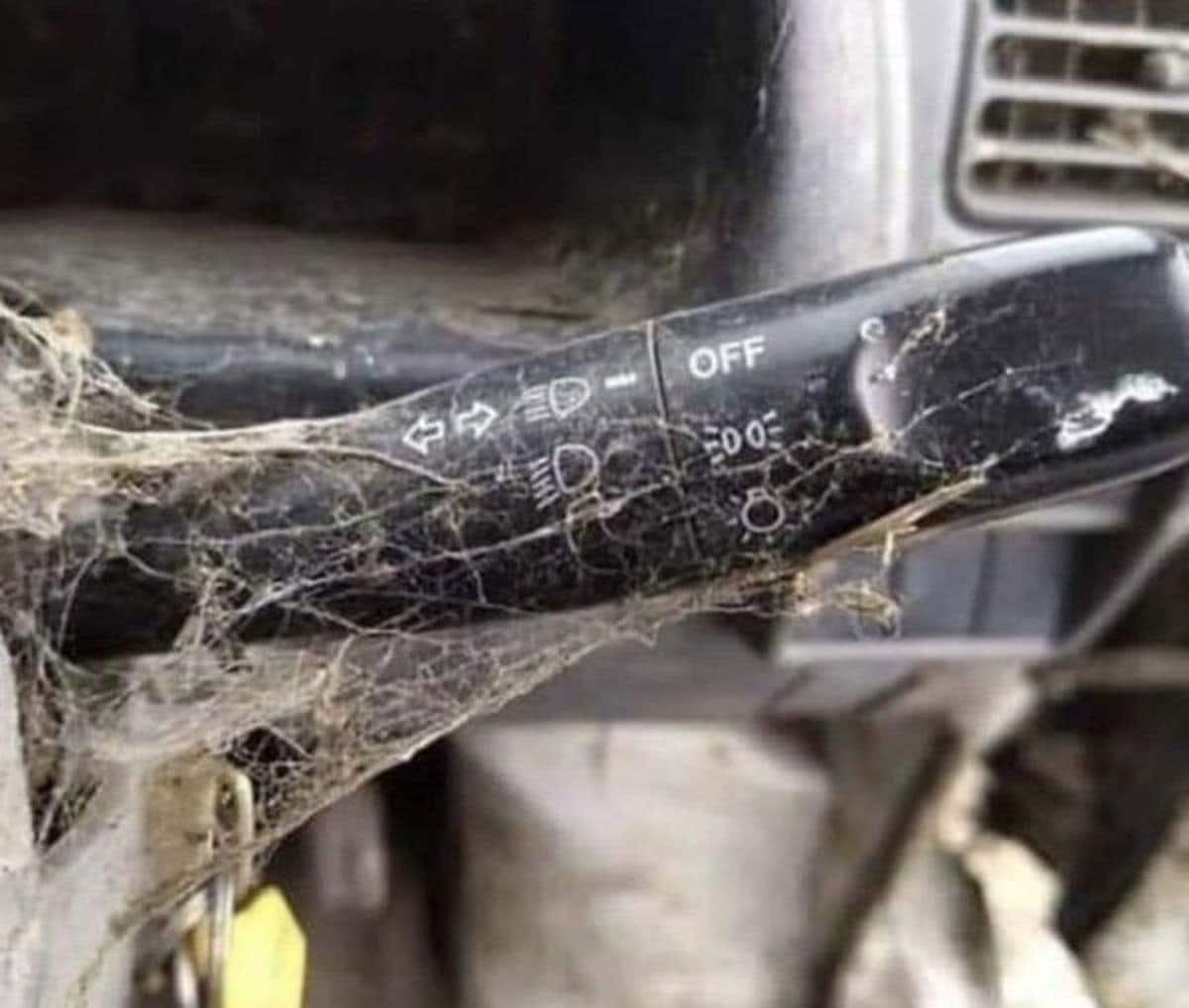 Der typische Blinker eines BMW-Fahrers | Lustiges | Was is hier eigentlich los?