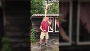 Nature you are scary: Der gestreifte Anglerfisch und der schnellste Biss der Welt | WTF | Was is hier eigentlich los?