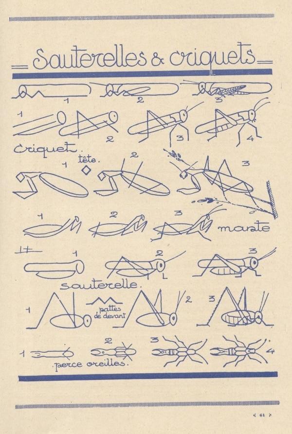 Wie man Tiere zeichnet – Anleitungen von 1930 | Design/Kunst | Was is hier eigentlich los?