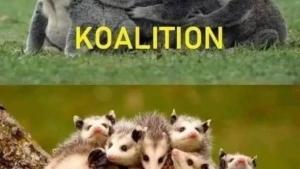 Der Unterschied zwischen Koalition und Opossition | Lustiges | Was is hier eigentlich los?