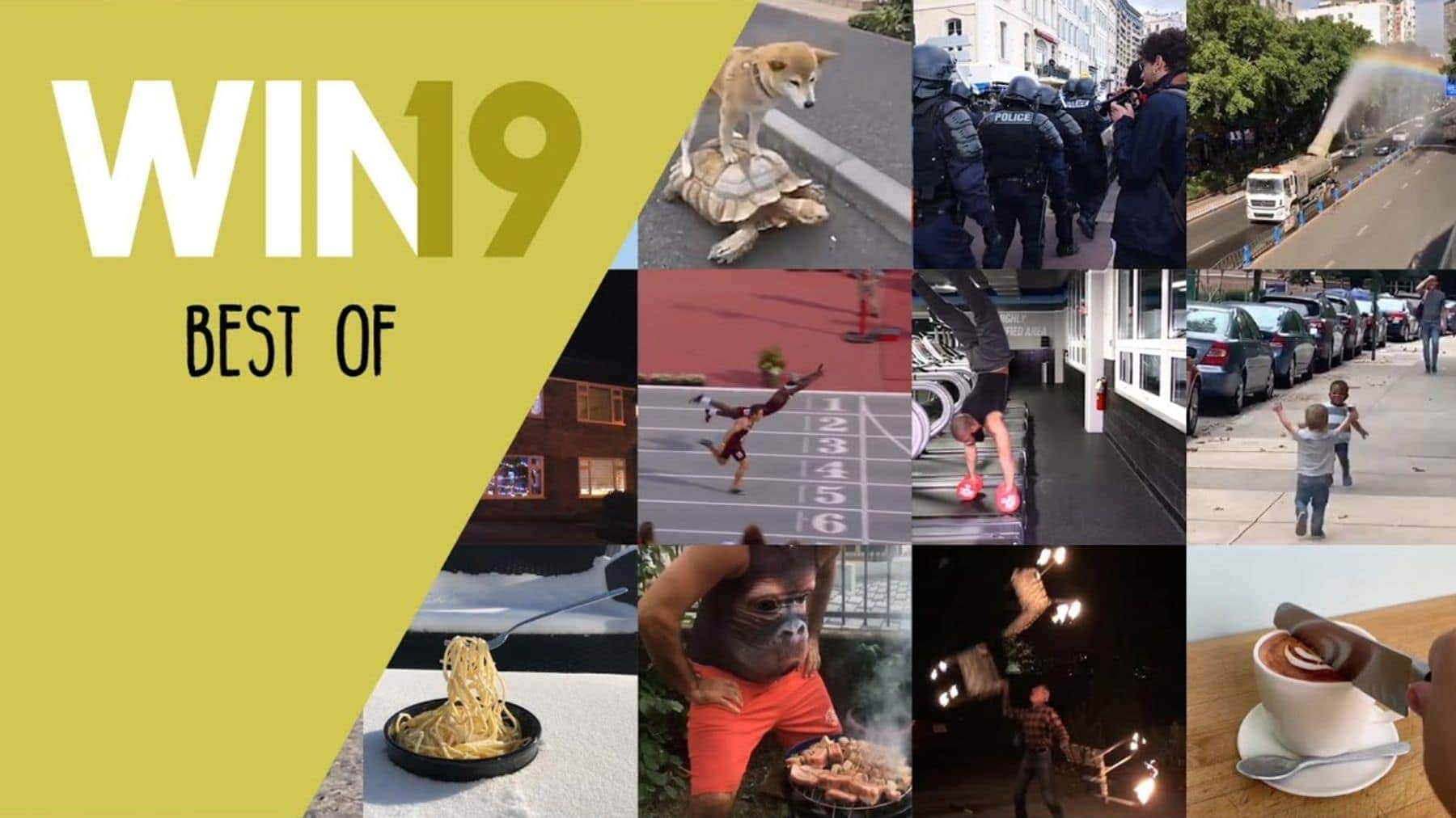 Win-Compilation – Best of 2019   Win-Compilation   Was is hier eigentlich los?