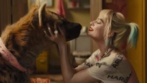 Trailer: Bird of Prey | Kino/TV | Was is hier eigentlich los?