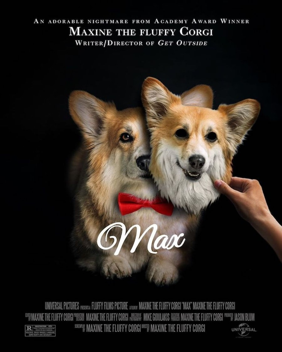Oscar-nominierte Filmposter in der Corgi-Version | Design/Kunst | Was is hier eigentlich los?