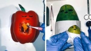 Die Obst- und Gemüse-Operationen von Emma Pickles | Awesome | Was is hier eigentlich los?