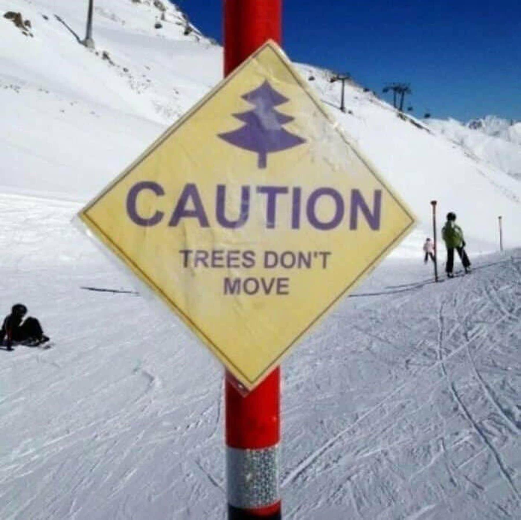 Ganz schön stur, so ein Baum | Lustiges | Was is hier eigentlich los?