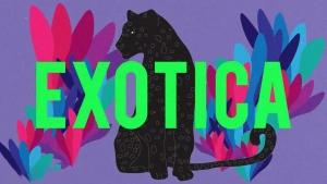 Purple Disco Machine - Exotica | Musik | Was is hier eigentlich los?