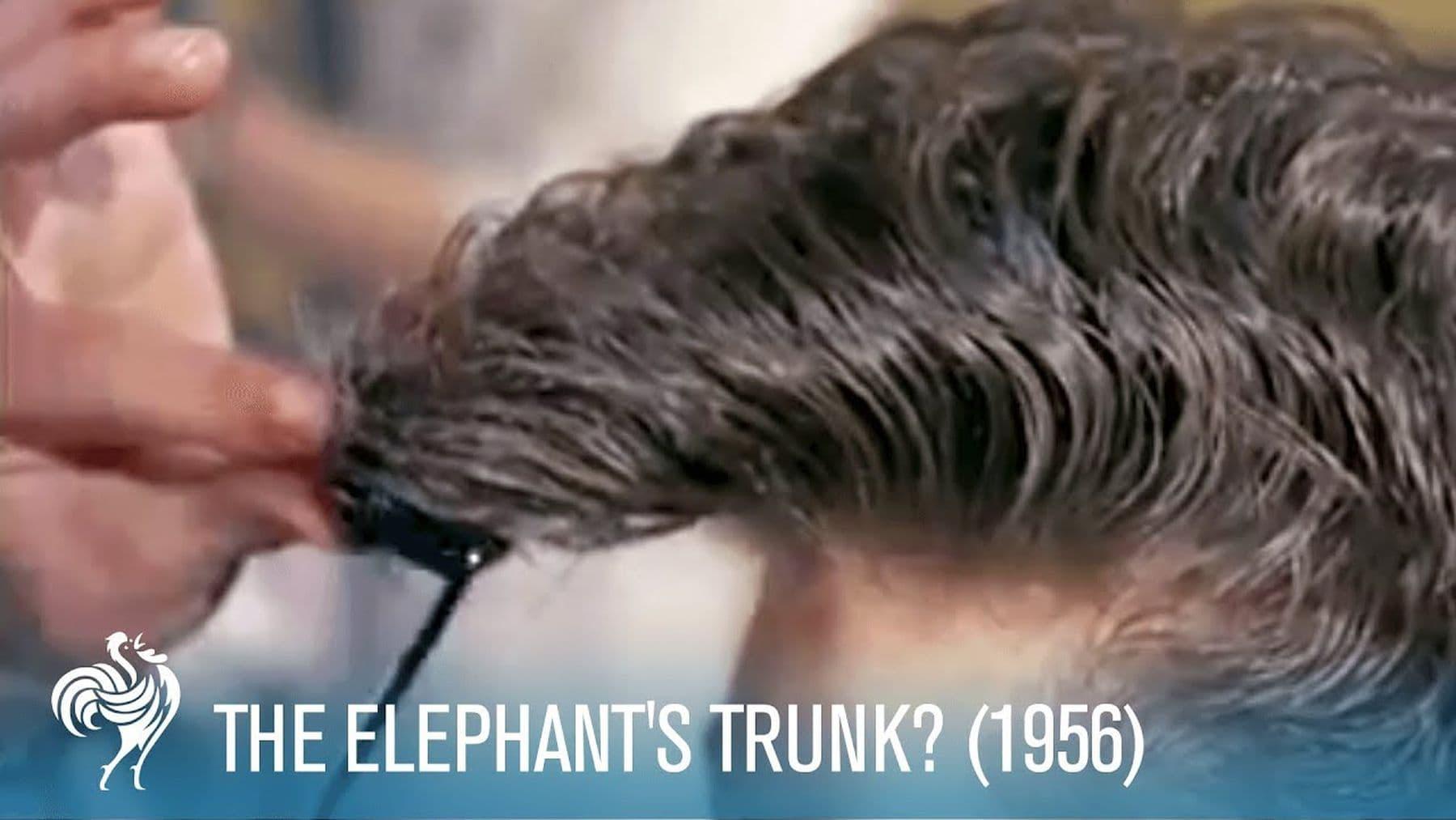 Der Elefantenrüssel als Frisur | Zeitgeschichte | Was is hier eigentlich los?