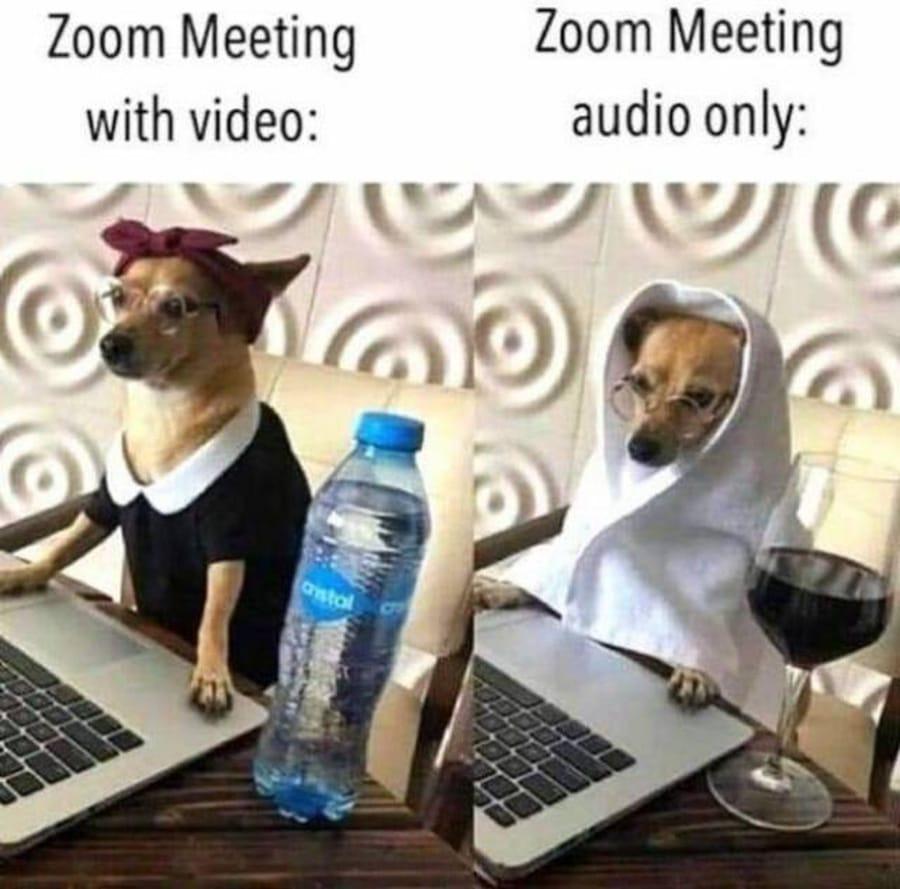 Die zwei Arten von Zoom-Meetings | Lustiges | Was is hier eigentlich los?