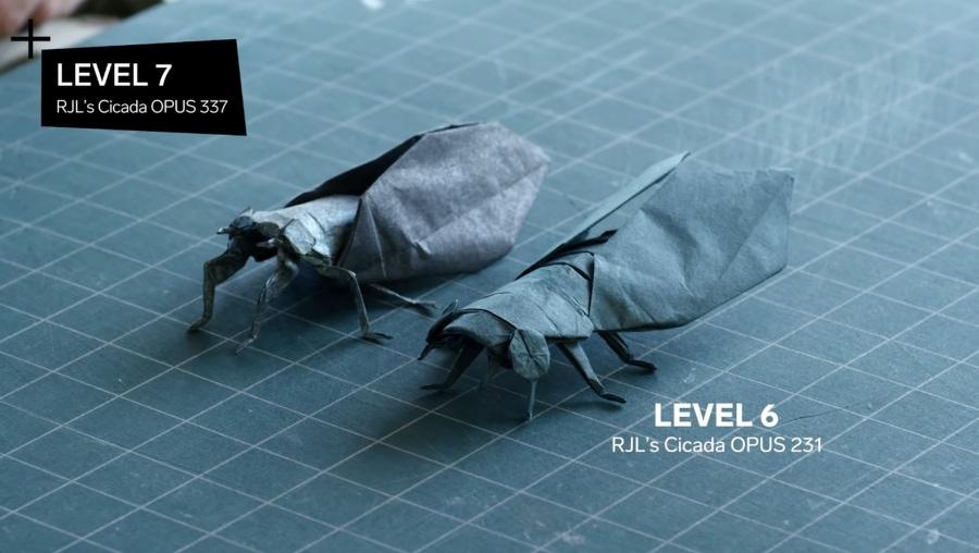 11 Schwierigkeitsgrade beim Origami | Was gelernt | Was is hier eigentlich los?