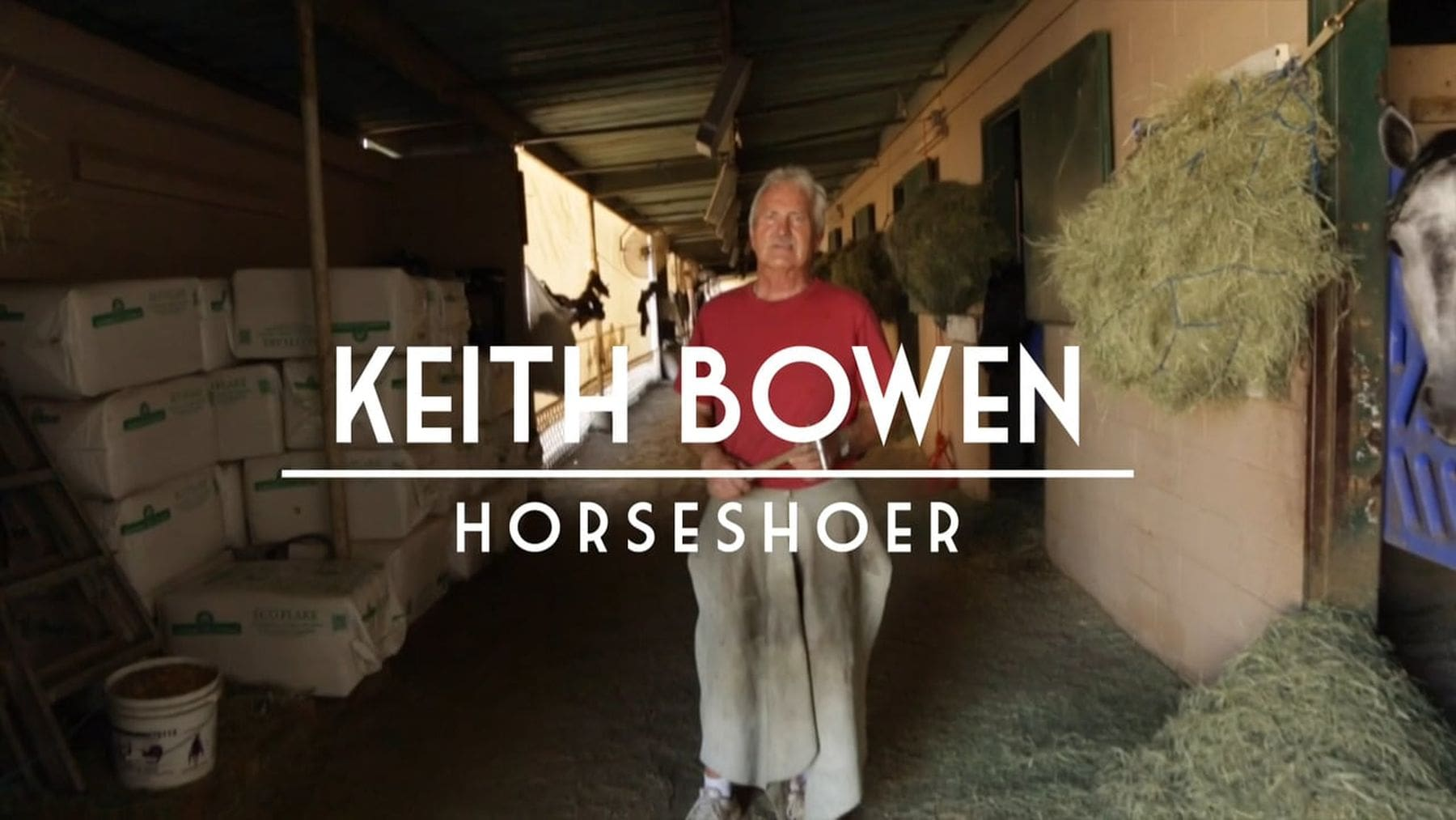 Hufschmied Keith Bowen bei der Arbeit über die Schulter geschaut | Handwerk | Was is hier eigentlich los?