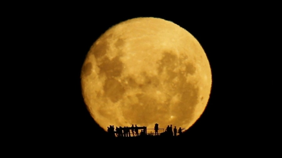 Full Moon Silhouettes | Awesome | Was is hier eigentlich los?
