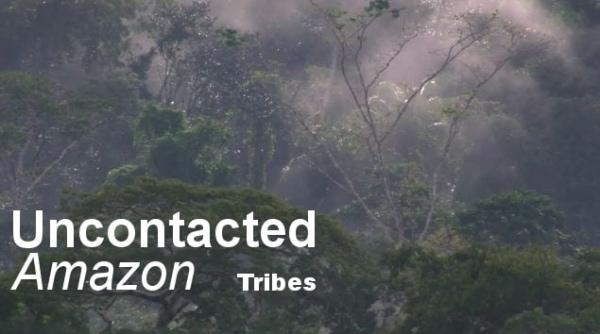 Wahnsinn: unentdeckte Stämme (also Menschen)